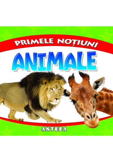 Primele notiuni. Animale