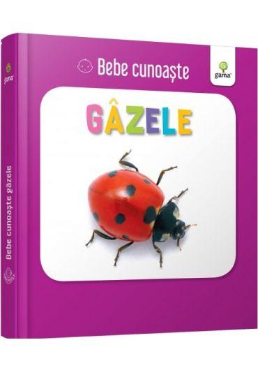 Gazele - Bebe cunoaste