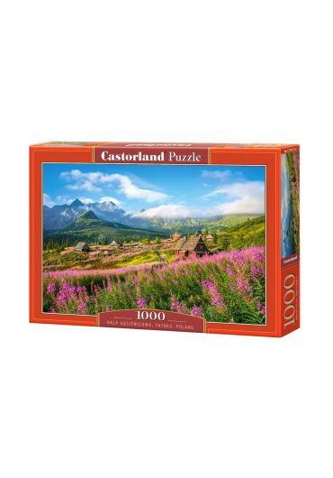 Puzzle 1000 piese Hala Gasienicowa, Tatras, Poland