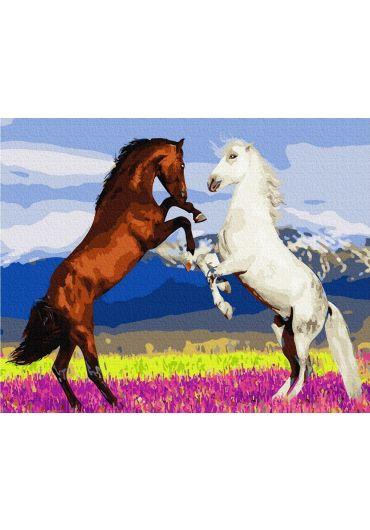 Set Picturi pe numere, Acuarello, 40X50 cm - Wild Horses