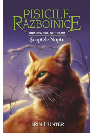 Pisicile Razboinice. Volumul XXI. Sub semnul stelelor. Soaptele Noptii
