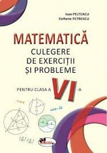 Matematica. Culegere de exercitii si probleme, clasa a VI-a