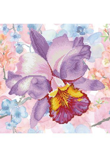 Tablou cu diamante inramat - Orhidee mov