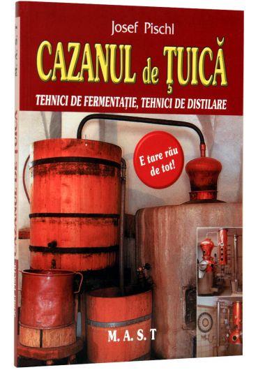 CAZANUL DE TUICA