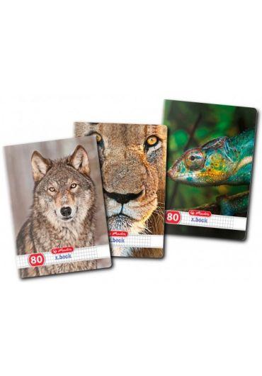 Caiet A4 80 file matematica, motiv Animals