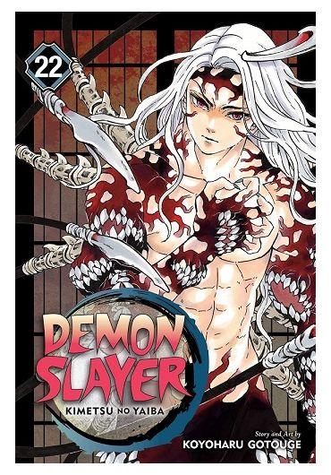 Demon Slayer - Kimetsu no Yaiba - Vol. 22