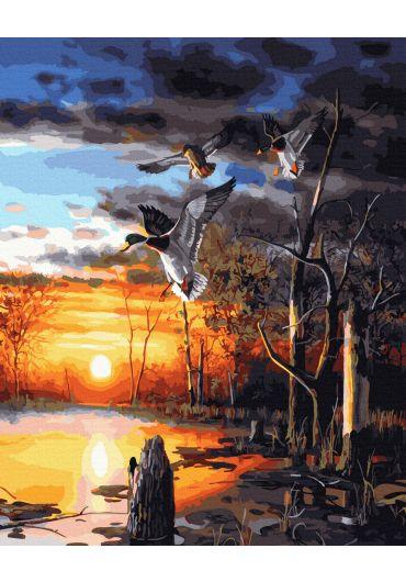 Set Picturi pe numere, Acuarello, 40X50 cm - Danube Delta