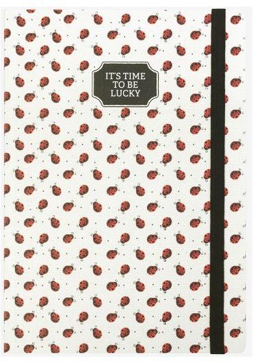 Carnet mare - Ladybugs