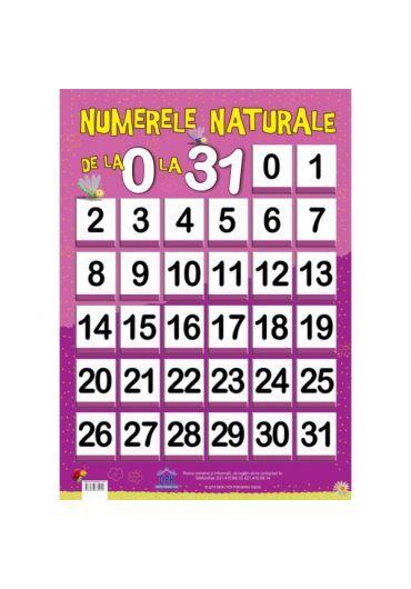 Plansa - Numere naturale de la 0 la 31
