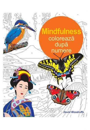 Mindfulnes - coloreaza dupa numere