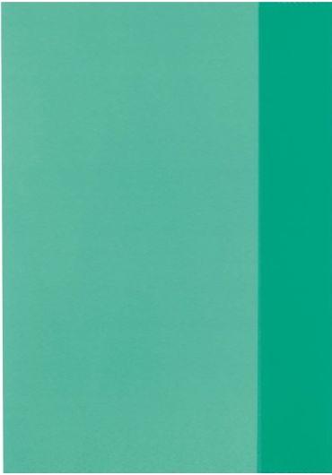 Coperta caiet A5 verde