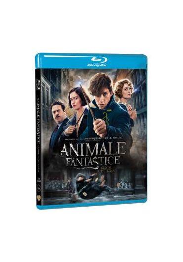 Animale Fantastice si unde le poti gasi (Blu Ray Disc)