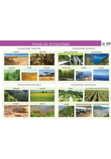 Plansa tipuri de ecosisteme